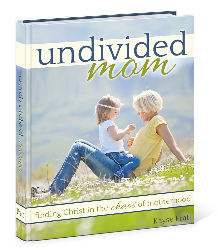 Undivided_Mom3D