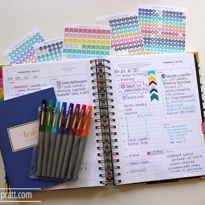 How I Use My Simplified Planner to Control ALL THE CRAZY!