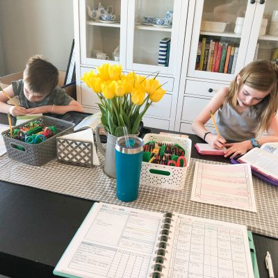 Our Homeschool Curriculum Choices for 2020-2021